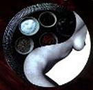 Taoïstische voedingsworkshop